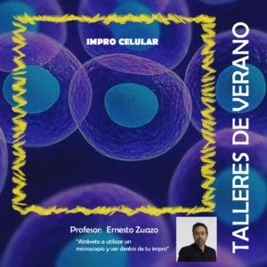 "Taller impro: ""improcelular"" por Ernesto Zuazo"